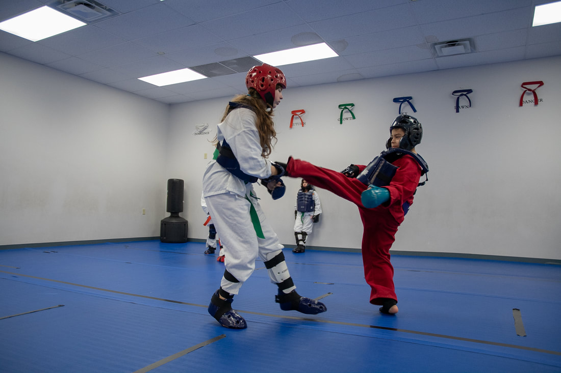 North Dallas Martial Arts 817-404-7315 - Home
